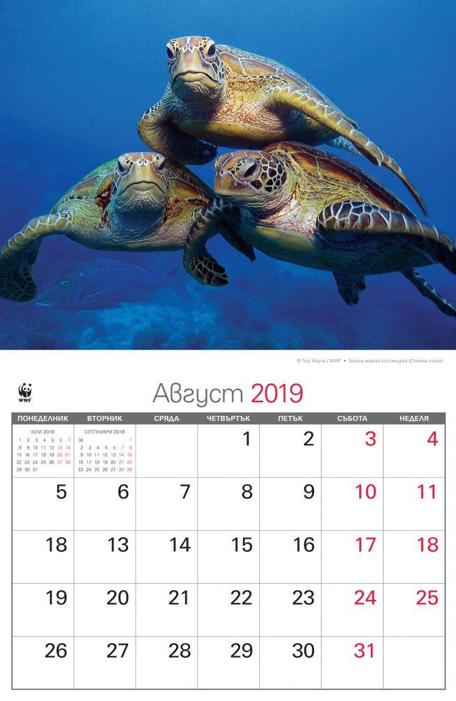 WWF_kalendar_2019_zadna_avgust