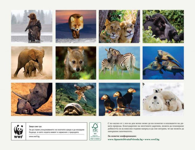 WWF_kalendar_2019_zadna_koritsa