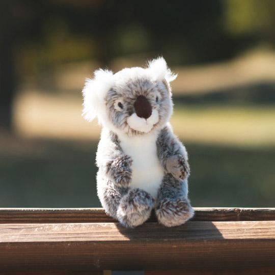 WWF_malka_plyushena_koala_2