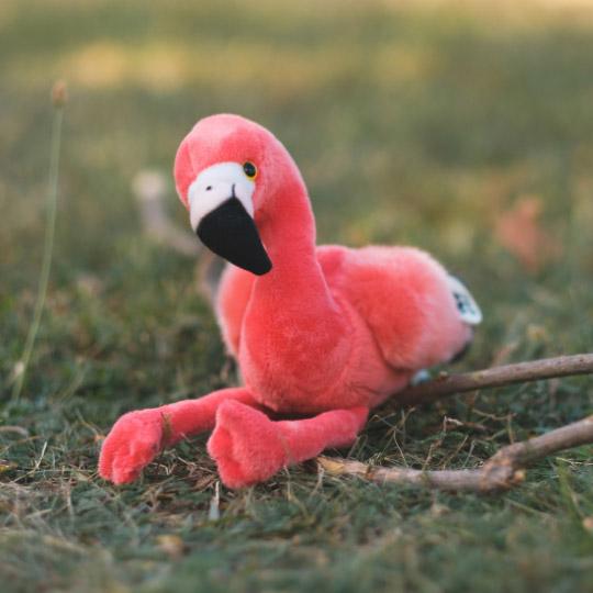 WWF_plyusheno_rozovo_flamingo